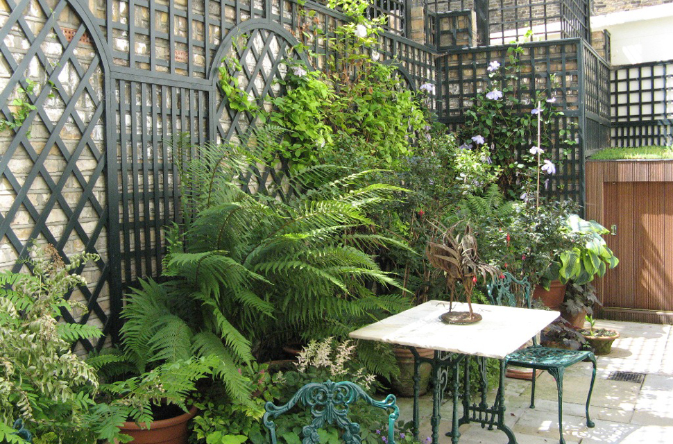 Garden Trellis and Structures