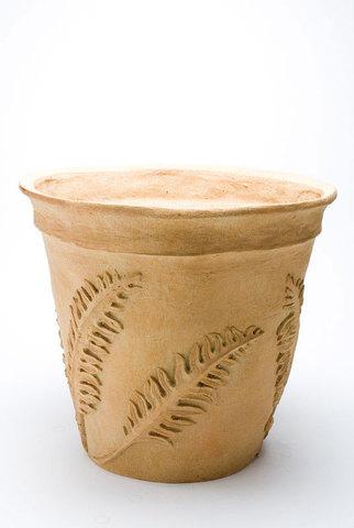 Fern Pot 1