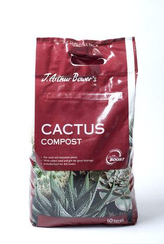 Specialist Cacti Compost 10L