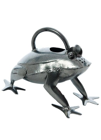 Silver Frog Watering Can