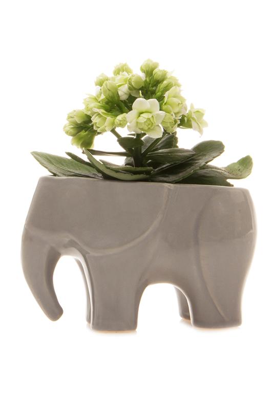 Elephant ceramic grey