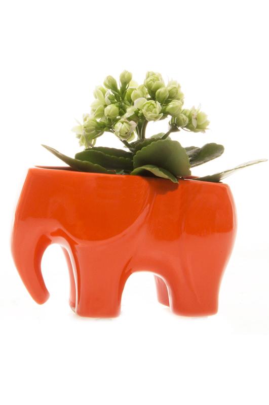 Elephant ceramic orange