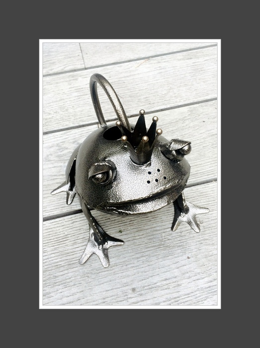 Frog Prince Metal Watering Can