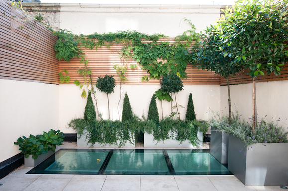 Garden Design and Planting