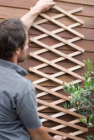 Riveted Diamond Expanding Trellis Natural 6'x3'