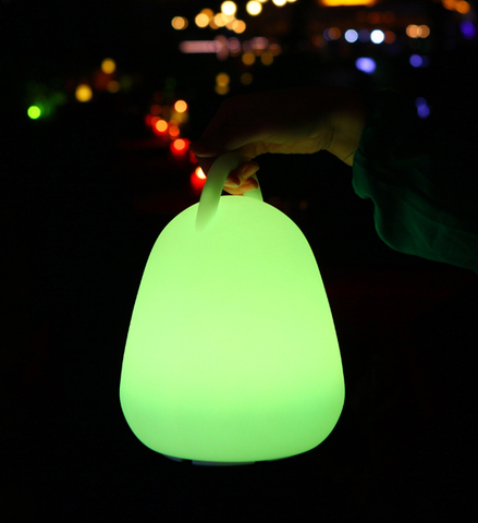 Hand Carry LED Lamp