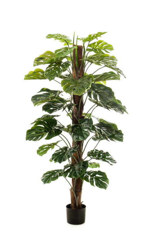 Artificial Monstera on Pole 150cm