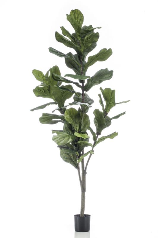 Artificial Ficus Lyrata 150cm