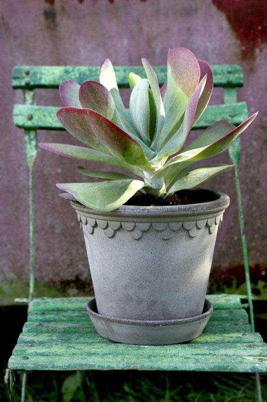 Copenhagen Pot Grey 18cm