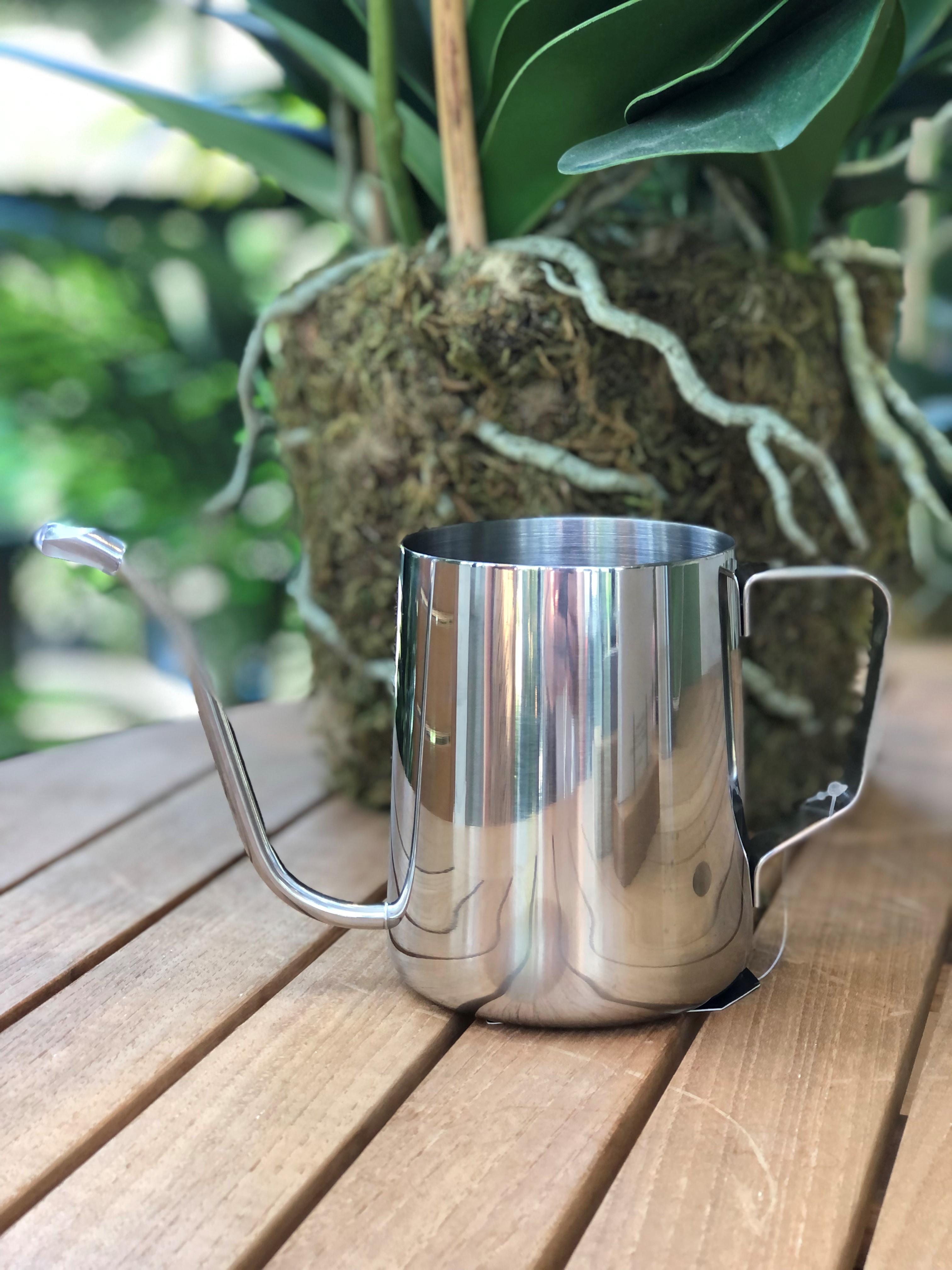 Stainless Steel Indoor Watering Can